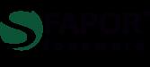 logo-fapor-stoneware
